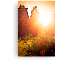 Sun and Roses. Canvas Print
