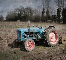 Old Fordson Tractor at Wicklewood, Norfolk by DaveTurner