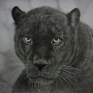 Black Leopard drawing by Istvan Natart