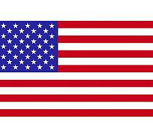 USA Flag by PingusTees
