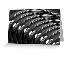 Black & White ~ Macro Abstract Greeting Card