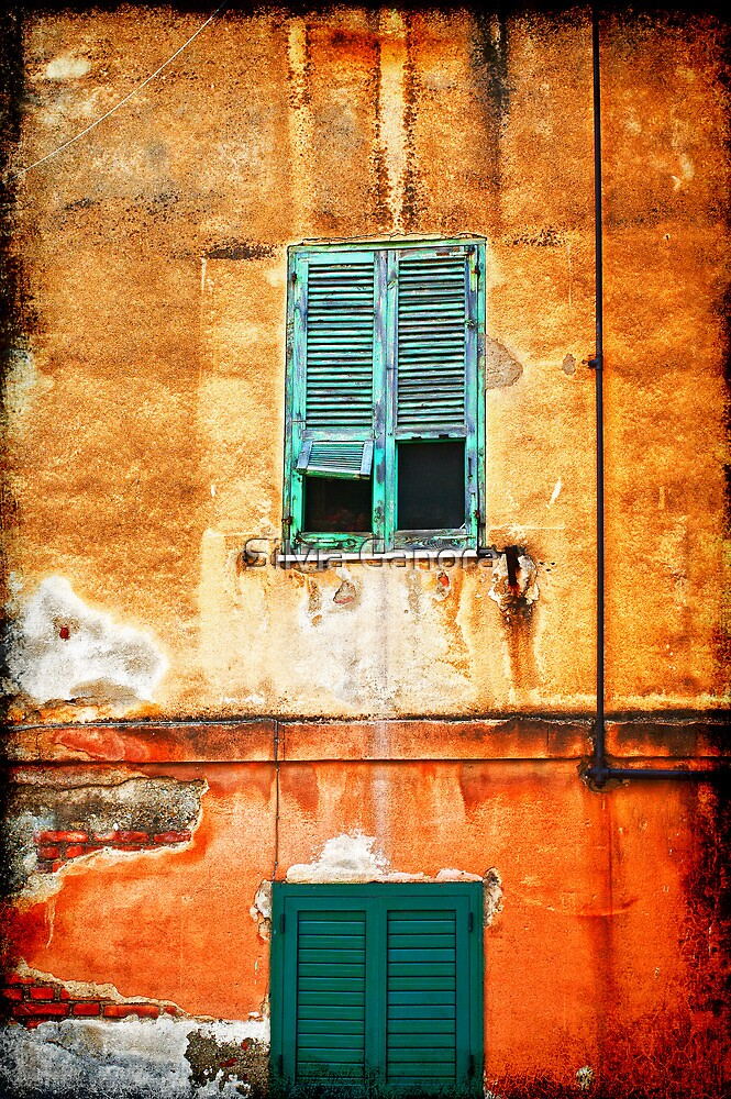Italian green shutters by Silvia Ganora