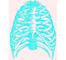 Skeleton rib cage - blue Photographic Print