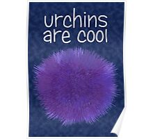 Urchins Are Cool Poster
