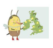 Weather Bee by Matt Hunt