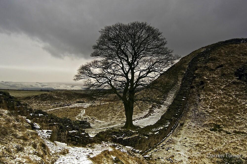 Sycamore Gap at Hadrians Wall by Darren Turner