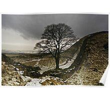 Sycamore Gap at Hadrians Wall Poster