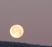 blue moon in a mauve sky by Christine Ford