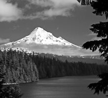 MT. Hood in Black and White by Jennifer Hulbert-Hortman