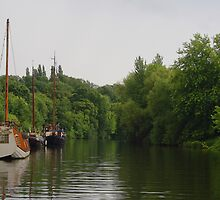 Sail Boats At Allington by Dave Godden