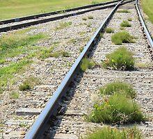 Merging Railway Tracks by rhamm