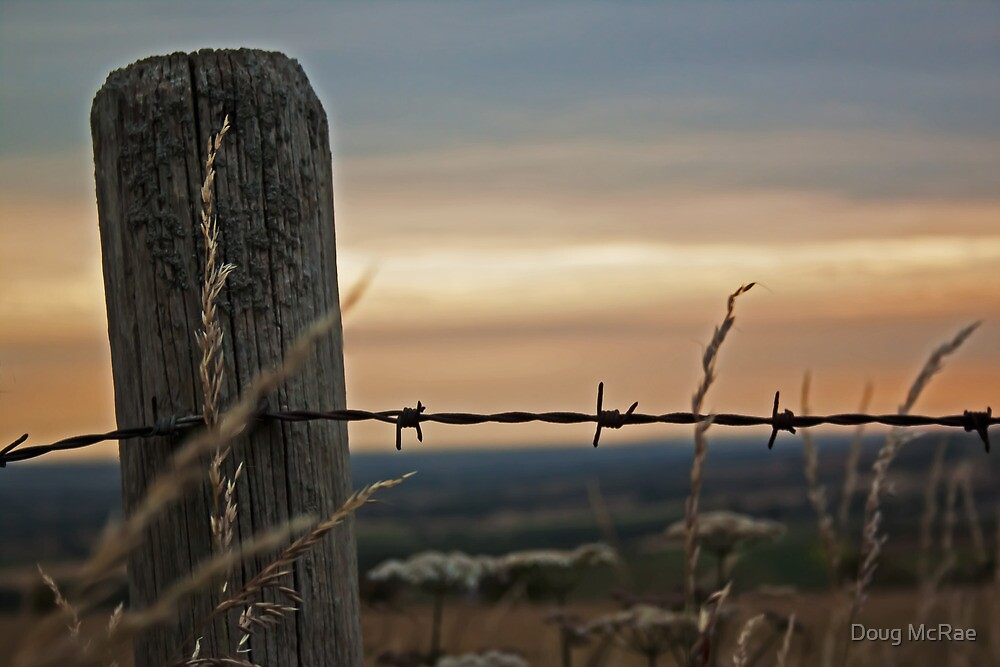 Post and wire by Doug McRae
