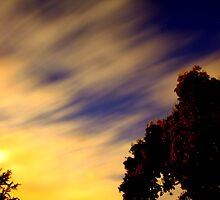 Midnight Sunset by Scott Loucks