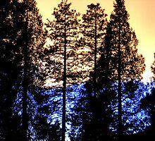 Half Sunset by Scott Loucks