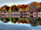 Autumn Reflections by Marcia Rubin