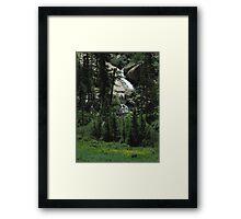 Willow Creek Cascades Framed Print