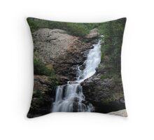 Willow Creek Falls Throw Pillow