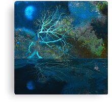 Blue Moon - Native Presence Canvas Print
