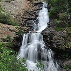 Willow Creek Falls by Bill Hendricks
