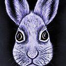 Bunny in pastel by Margaret Sanderson