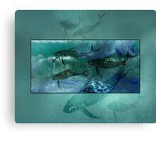 Playful Porpoise Canvas Print