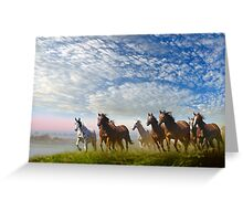 Spirit Of The Prairies Greeting Card