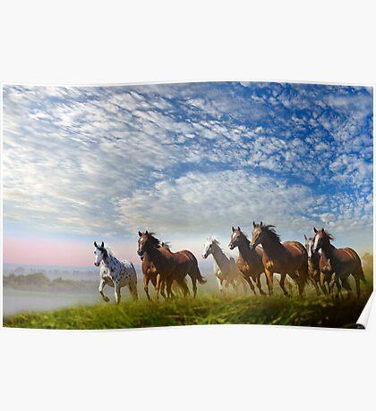Spirit Of The Prairies Poster