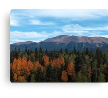 Pikes Peak from Divide, Colorado in the fall Canvas Print