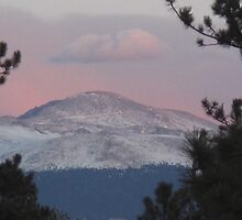 Purple Mountain Majesty by Christine Ford