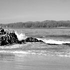 Beach scape in B&amp;W by AnnDixon