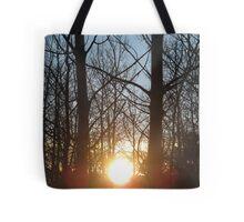 sunset through tree limbs Tote Bag