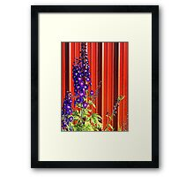 A Clash of Beauty (Lupines) Framed Print