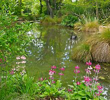 Pond, Flaxmere Garden, South Island, New Zealand.  by johnrf