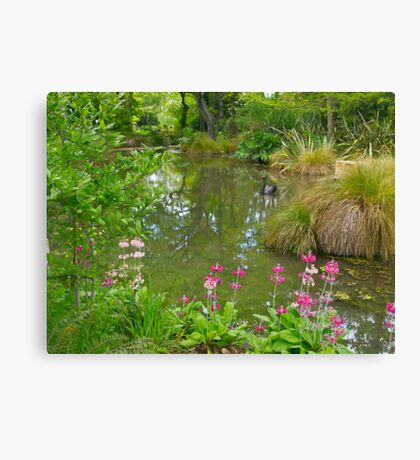 Pond, Flaxmere Garden, South Island, New Zealand.  Canvas Print