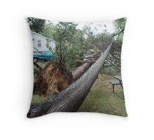 Our neighbors trees, on our garage! Throw Pillow
