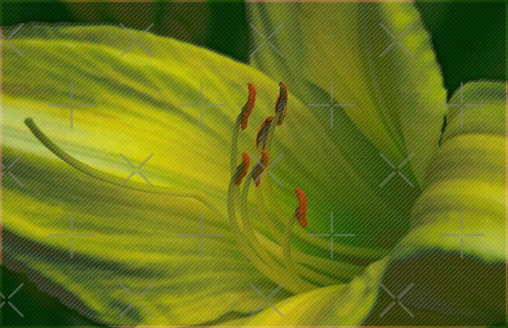 Rough Texture Lily by Vickie Emms