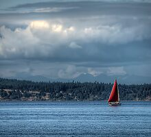 The Red Sail by Mari  Wirta