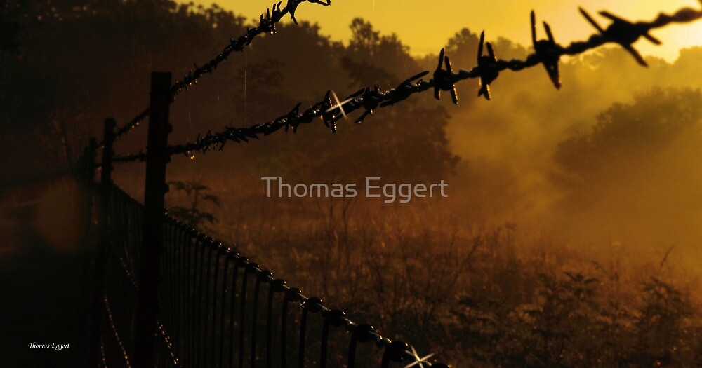 Dawn by Thomas Eggert