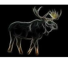 Medicine Wheel Totem Animals by Liane Pinel- Moose Photographic Print
