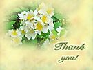 Thank You Card - Multiflora Roses by MotherNature