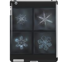 Under the grey sky - real snowflake collage iPad Case/Skin