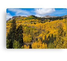 Colorado Golden Autumn Bliss Canvas Print