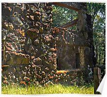 Jack London's Mansion ruins Poster