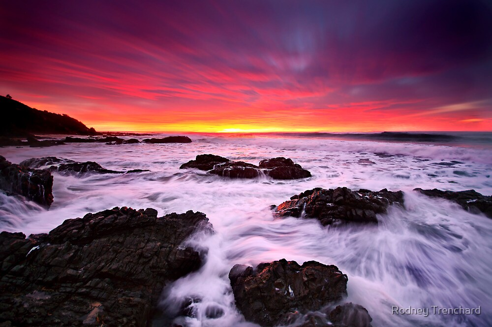 Sweet Motion. by Rodney Trenchard