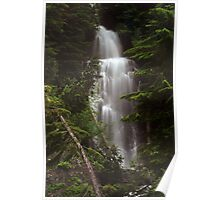 Falls on Hwy 410 to Enumclaw Poster