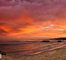 Golden Dawn at Trigg Beach by Michael Bailey