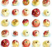 Watercolour apples patern by Olga Serova
