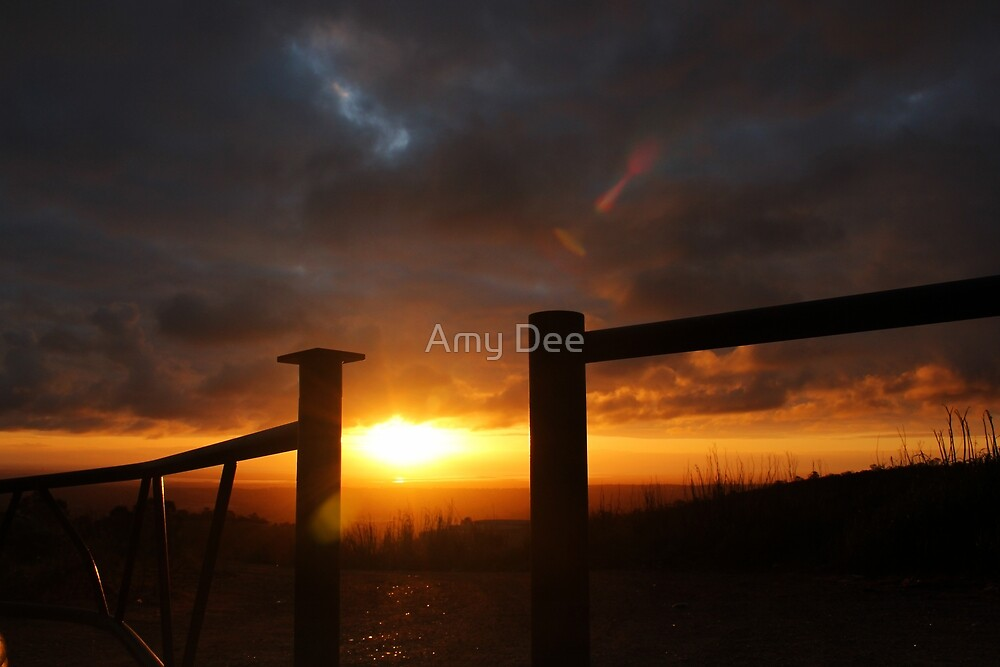 Stormy Silhouette by Amy Dee