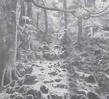 Llanrhaeadr Forest by artbyjude