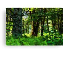 Blue Ridge Parkway~Milepost 297 Canvas Print